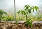 Gärtnerbedarf