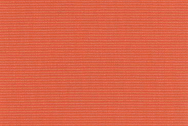 Orange/Apricot
