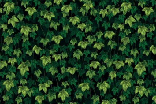 Planengewebe leicht - Efeu-Dschungel