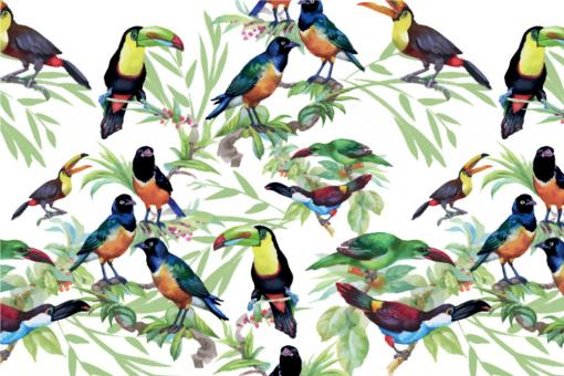 Dschungel-Vögel - Outdoor-Stoff Plus