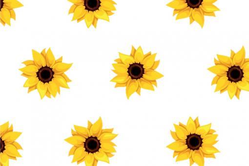 Planengewebe leicht - Sonnenblumen