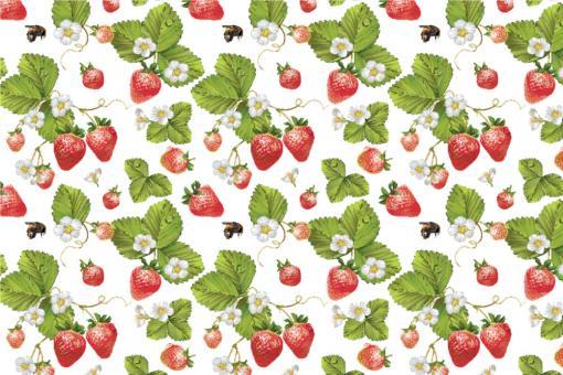 Erdbeerpflanzen - Outdoor-Stoff Plus Weiß/Grün