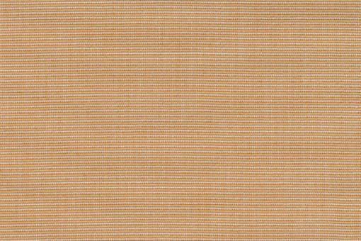 Markise Spain Summer - Struktur Beige/Creme
