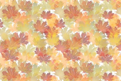 Planengewebe leicht - Herbstlaub