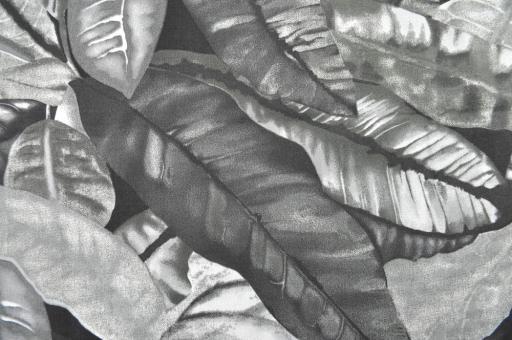Outdoor- und Markisenstoff - Amazonas Grau